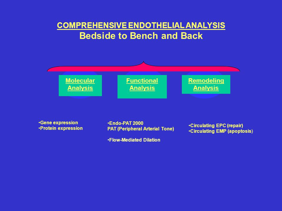 COMPREHENSIVE ENDOTHELIAL ANALYSIS Bedside to Bench and Back