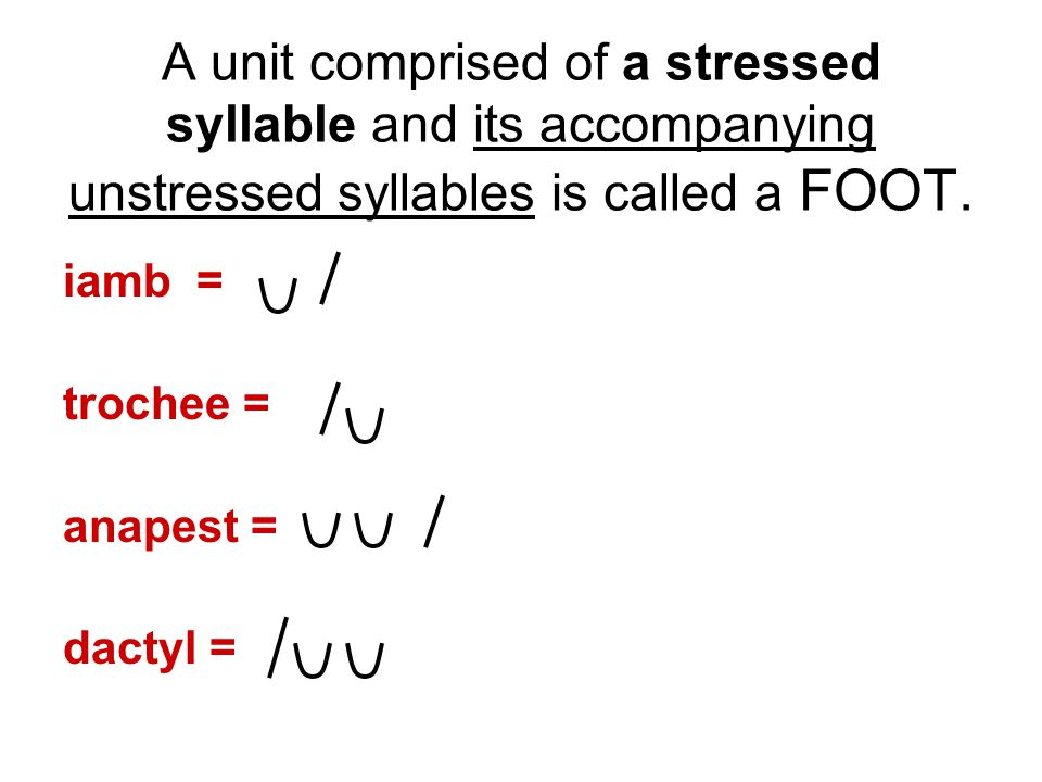 A unit comprised of a stressed syllable and its accompanying unstressed syllables is called a FOOT.