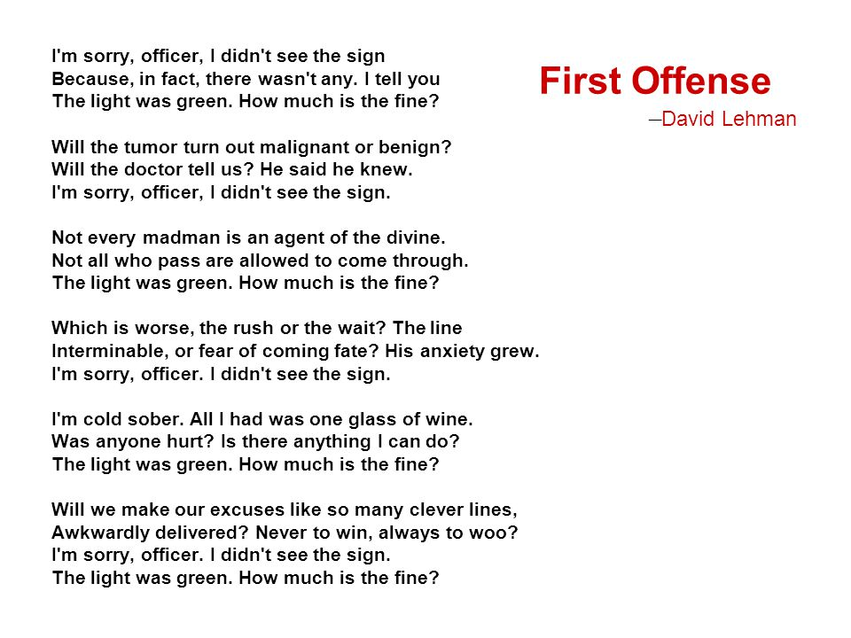 First Offense —David Lehman I m sorry, officer, I didn t see the sign