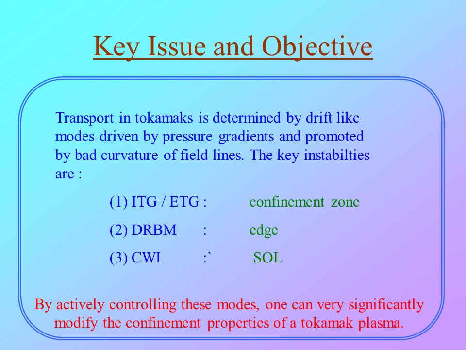 Key Issue and Objective