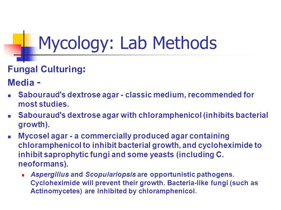 Mycology: Lab Methods Fungal Culturing: Media -