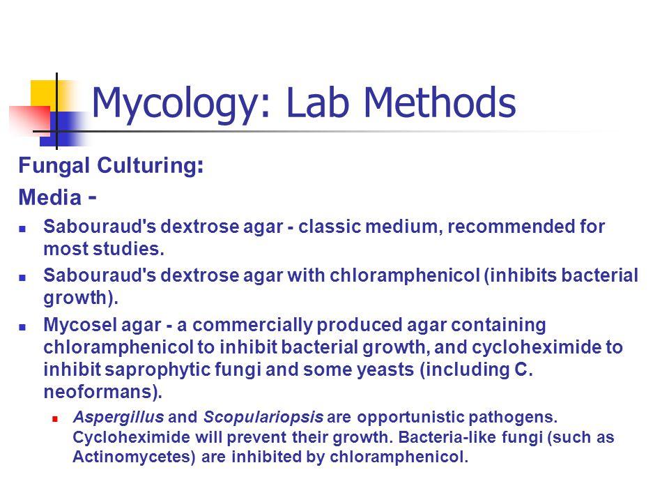 Mycology: Lab Methods Fungal Culturing: Media -