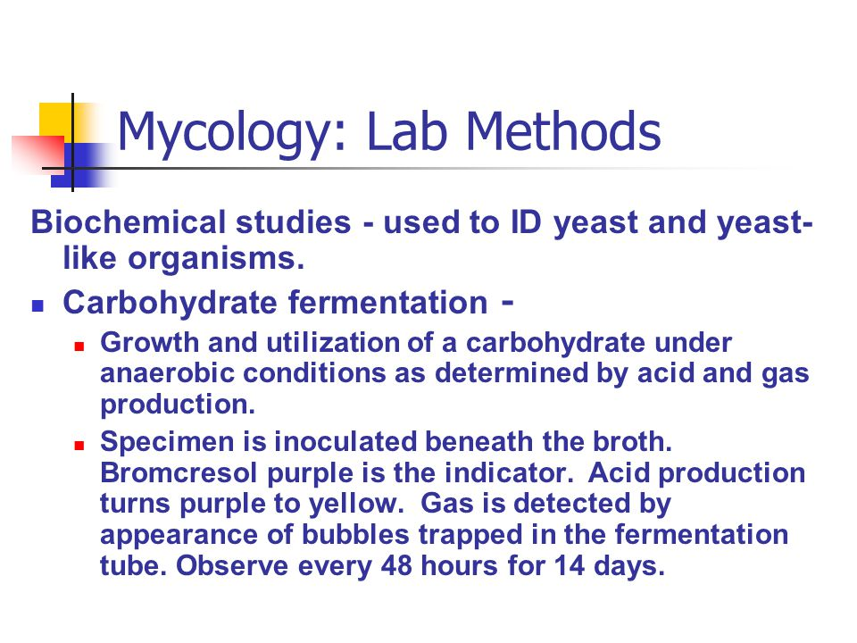 Mycology: Lab Methods Biochemical studies - used to ID yeast and yeast-like organisms. Carbohydrate fermentation -