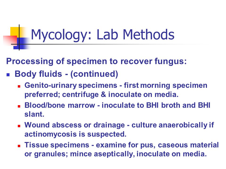 Mycology: Lab Methods Processing of specimen to recover fungus: