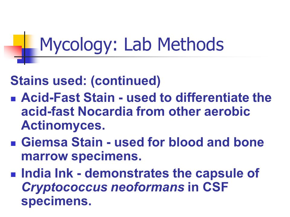 Mycology: Lab Methods Stains used: (continued)