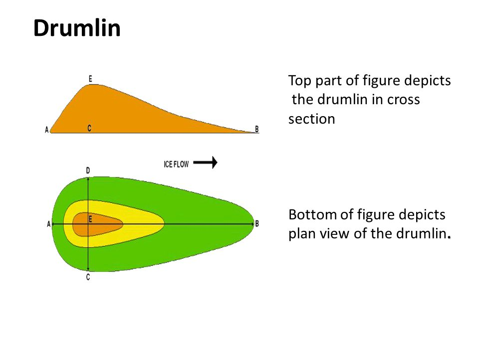 Drumlin Top part of figure depicts the drumlin in cross section