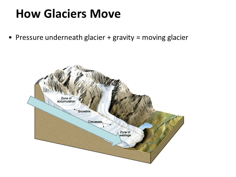 How Glaciers Move Pressure underneath glacier + gravity = moving glacier
