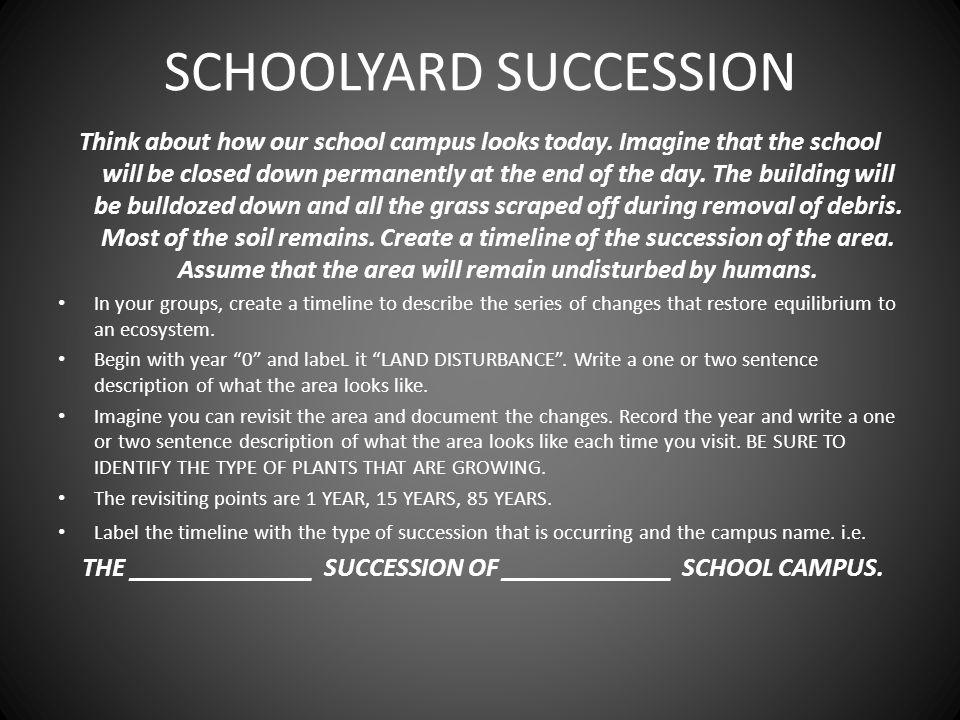 SCHOOLYARD SUCCESSION