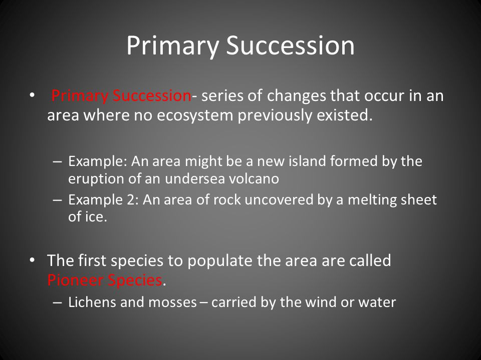 Primary Succession Primary Succession- series of changes that occur in an area where no ecosystem previously existed.