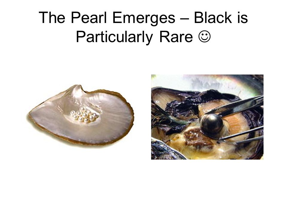 The Pearl Emerges – Black is Particularly Rare 