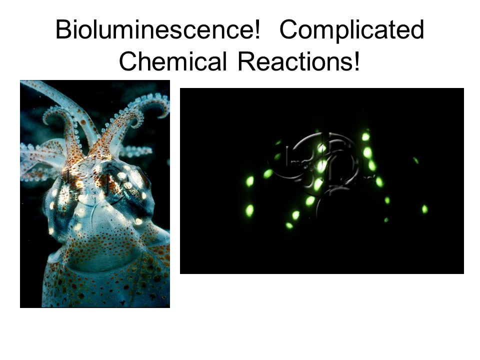 Bioluminescence! Complicated Chemical Reactions!
