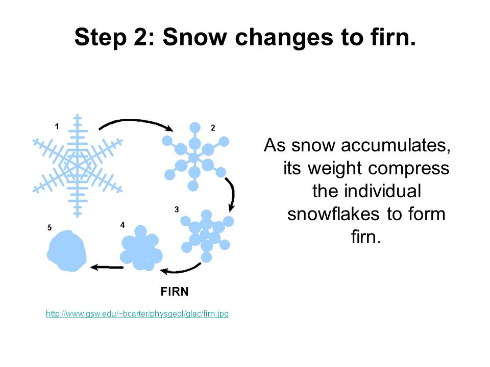 Step 2: Snow changes to firn.