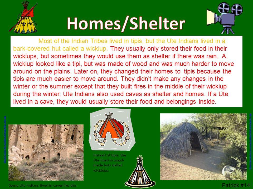 Homes/Shelter