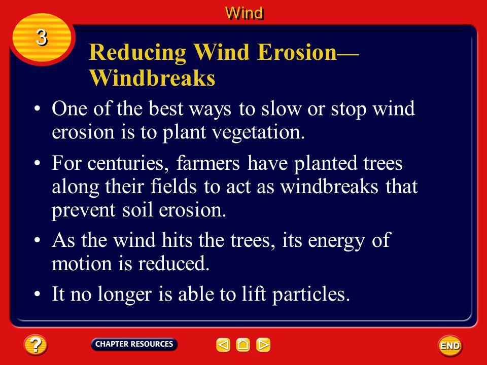 Reducing Wind Erosion— Windbreaks