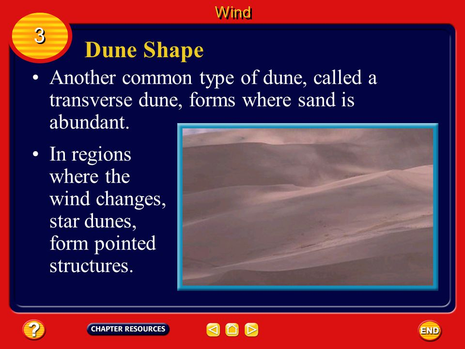 Wind 3. Dune Shape. Another common type of dune, called a transverse dune, forms where sand is abundant.