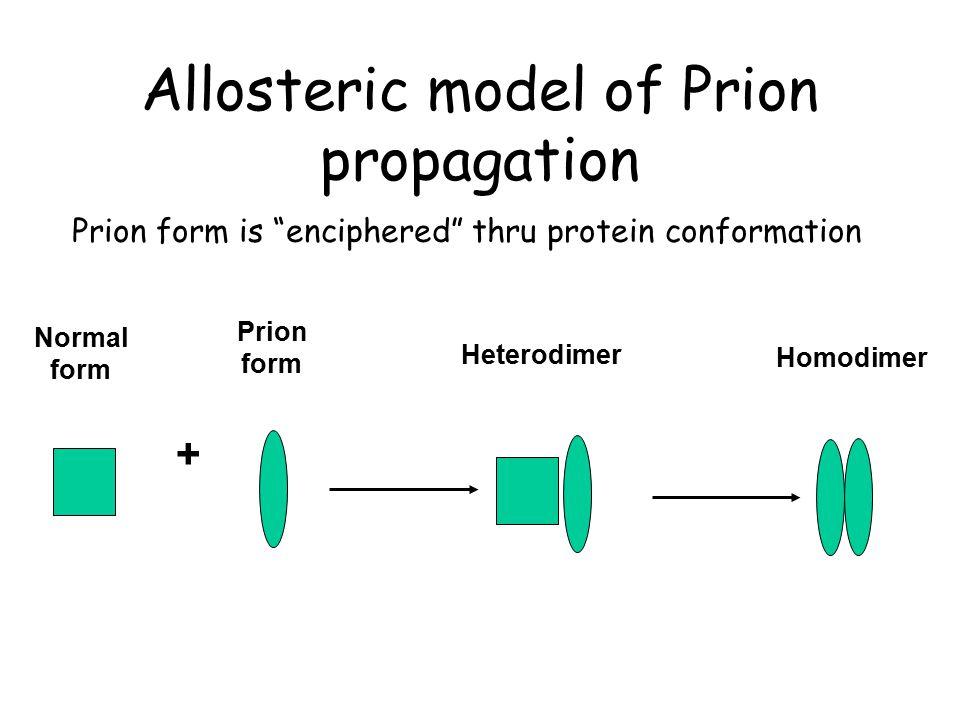 Allosteric model of Prion propagation