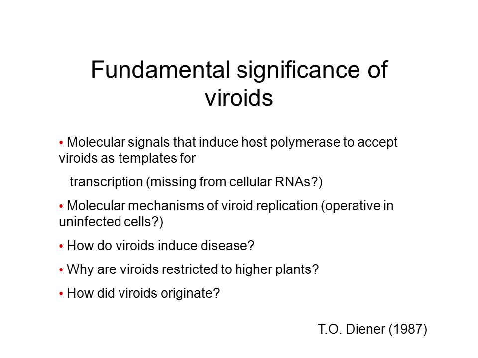 Fundamental significance of viroids
