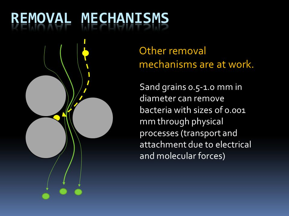 Removal Mechanisms Other removal mechanisms are at work.