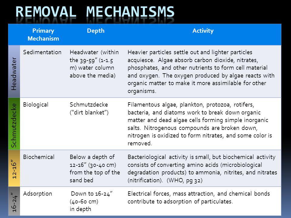 Removal Mechanisms 16-24 12-16 Schmutzdecke Headwater