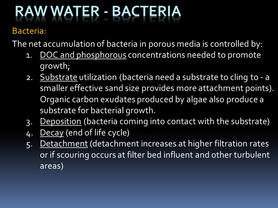 Raw Water - Bacteria Bacteria: