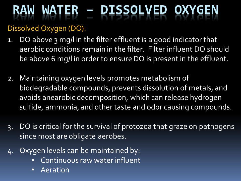Raw Water – Dissolved Oxygen