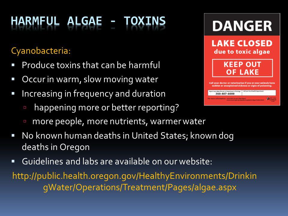 Harmful Algae - Toxins Cyanobacteria: