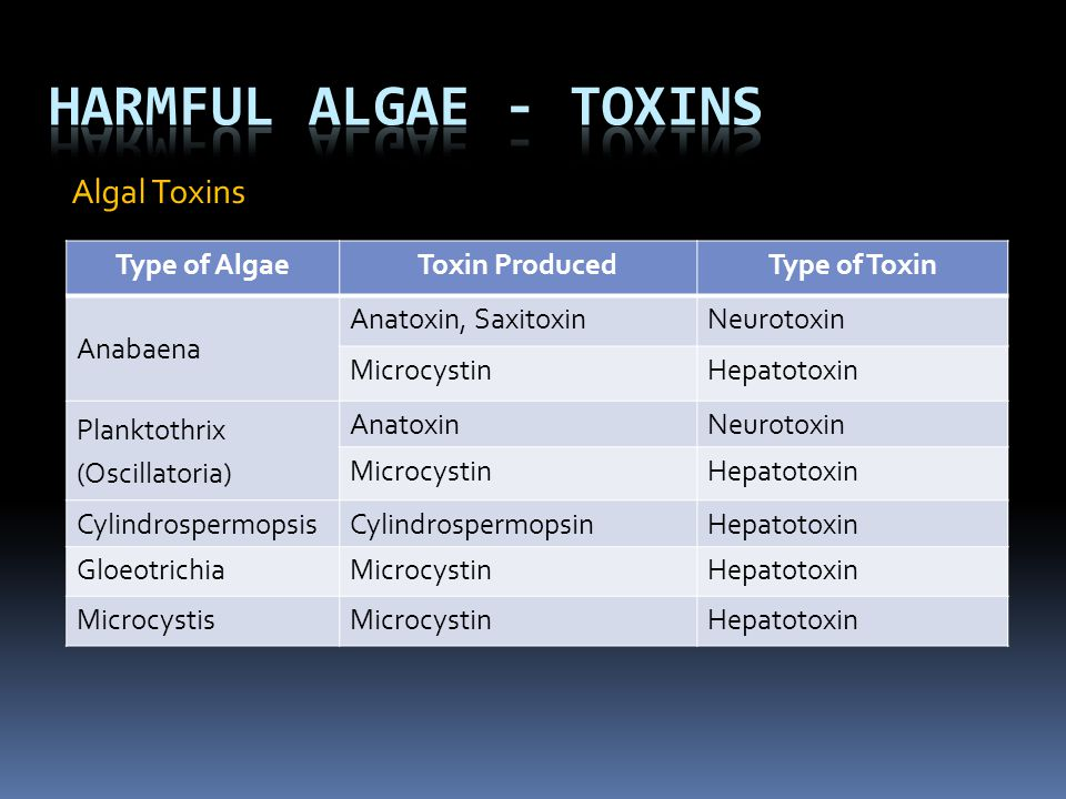 Harmful Algae - Toxins Algal Toxins Type of Algae Toxin Produced