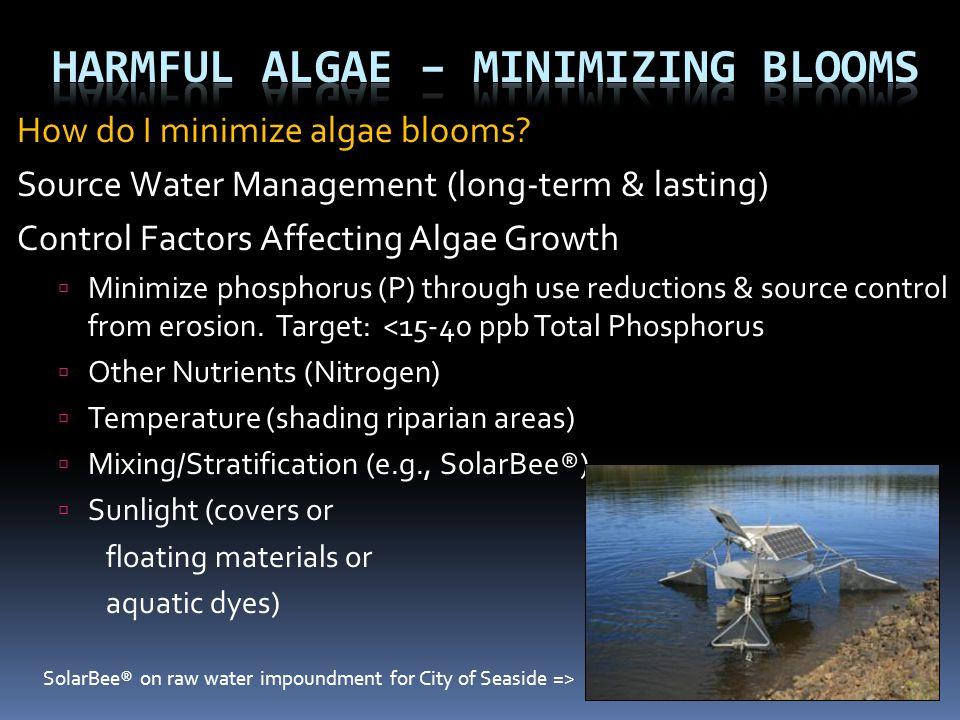 Harmful Algae – Minimizing Blooms