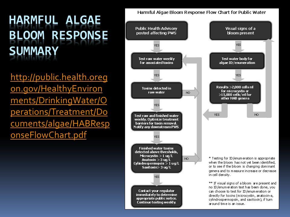 Harmful Algae Bloom Response summary