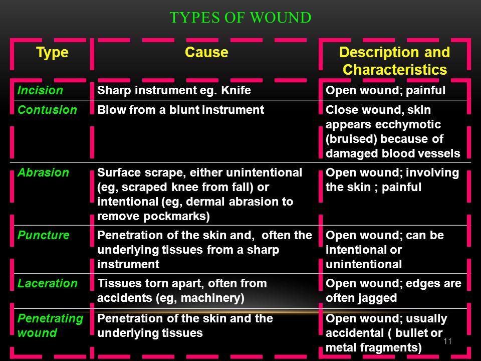 Description and Characteristics