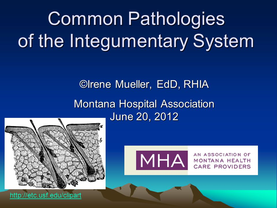 Common Pathologies of the Integumentary System