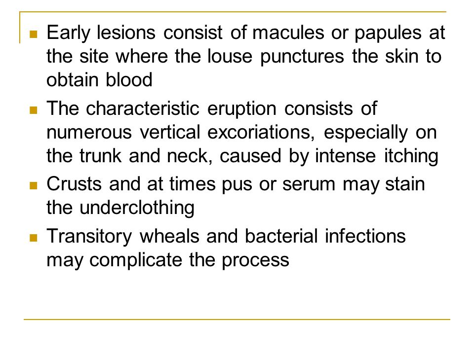Early lesions consist of macules or papules at the site where the louse punctures the skin to obtain blood