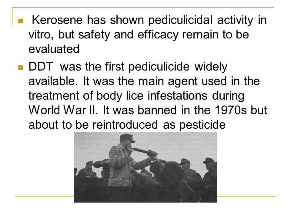 Kerosene has shown pediculicidal activity in vitro, but safety and efficacy remain to be evaluated