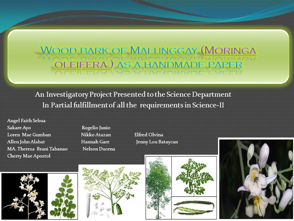 the feasibility of malunggay extract moringa oleifera as cockroach killer essay Laguna belair science school science research of the students before they the effects of malunggay (moringa oleifera) extract as subterranean termite killer.