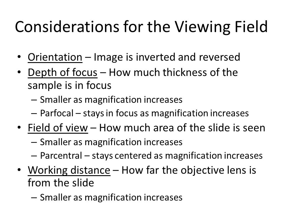 Considerations for the Viewing Field