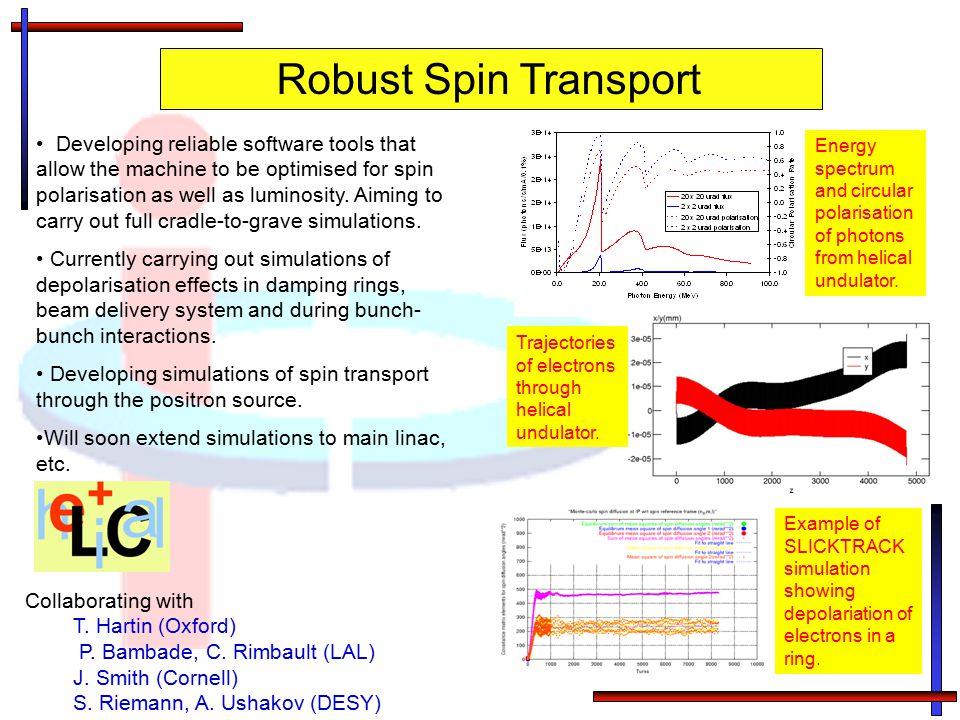 Robust Spin Transport