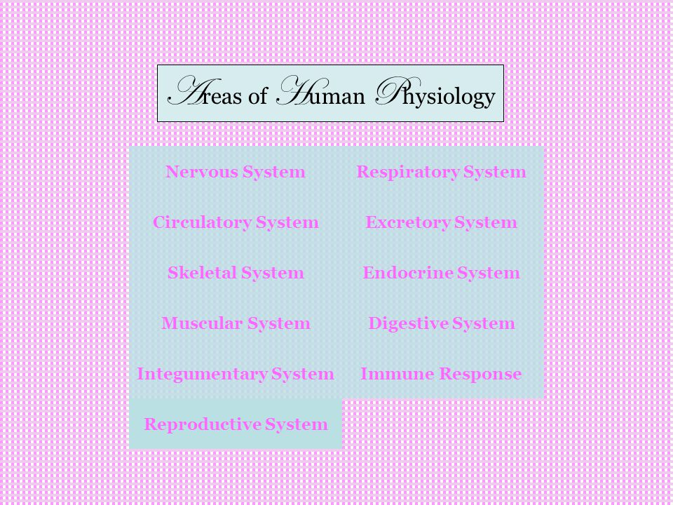 Areas of Human Physiology
