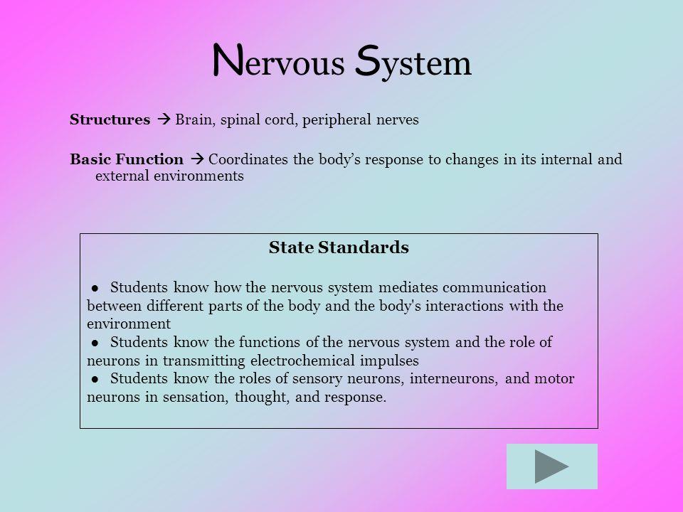 Nervous System State Standards