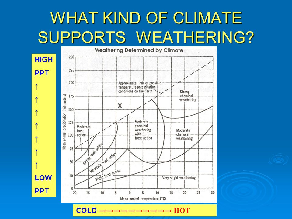 WHAT KIND OF CLIMATE SUPPORTS WEATHERING