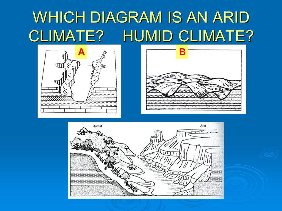 WHICH DIAGRAM IS AN ARID CLIMATE HUMID CLIMATE