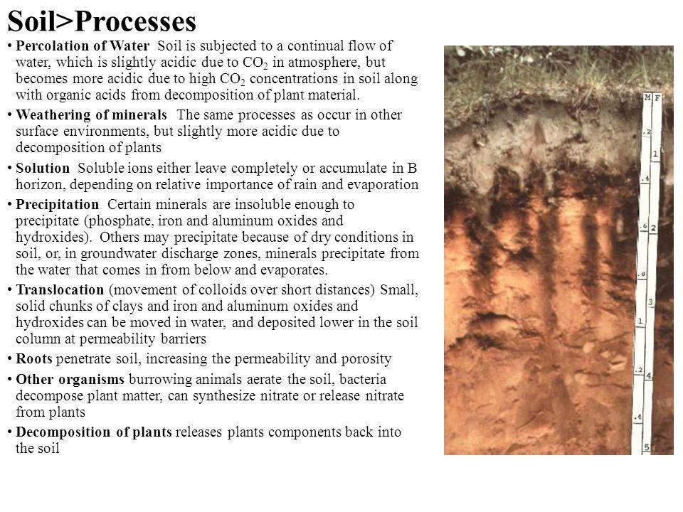 Soil>Processes