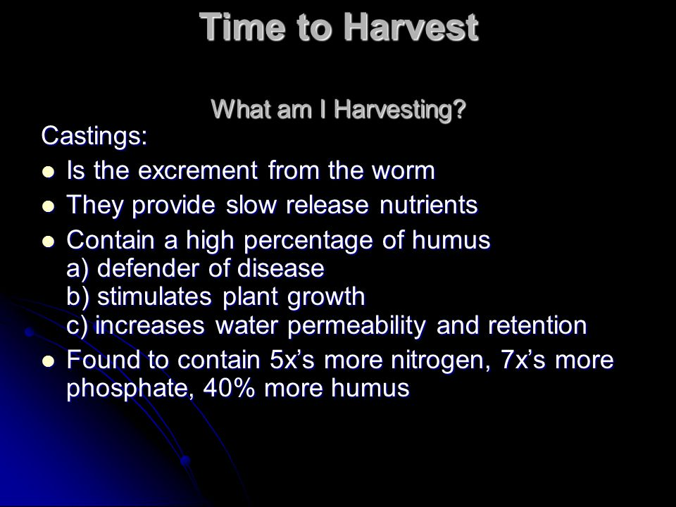 Time to Harvest What am I Harvesting