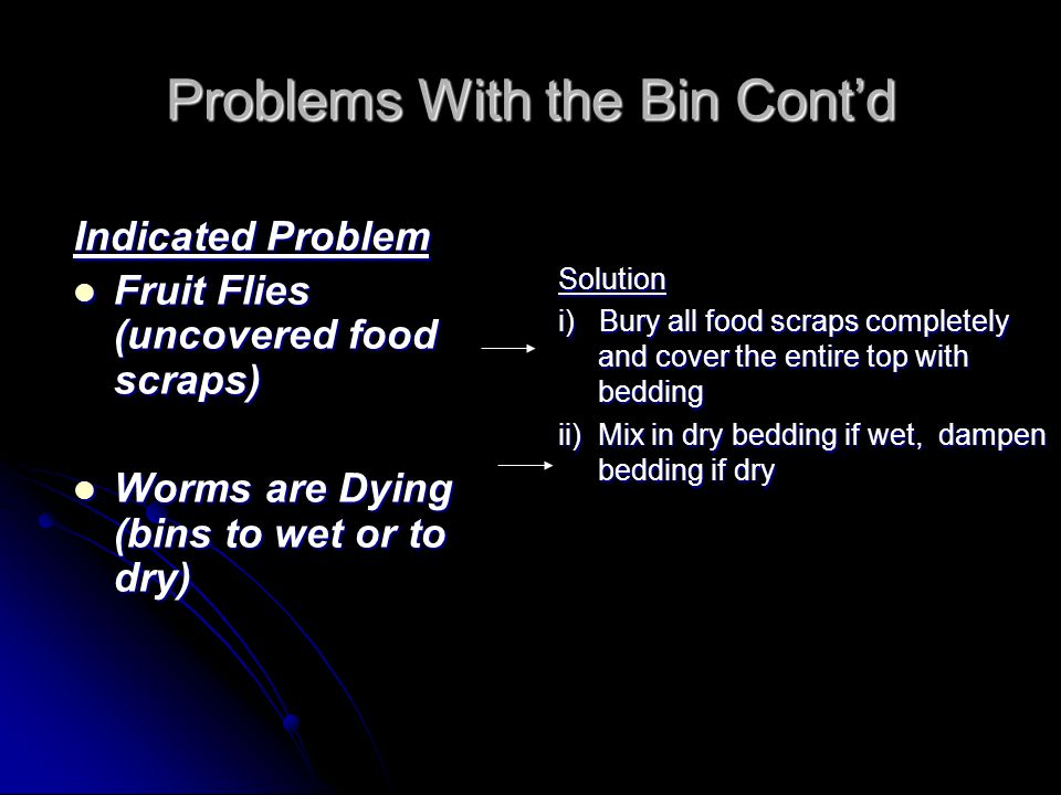 Problems With the Bin Cont'd