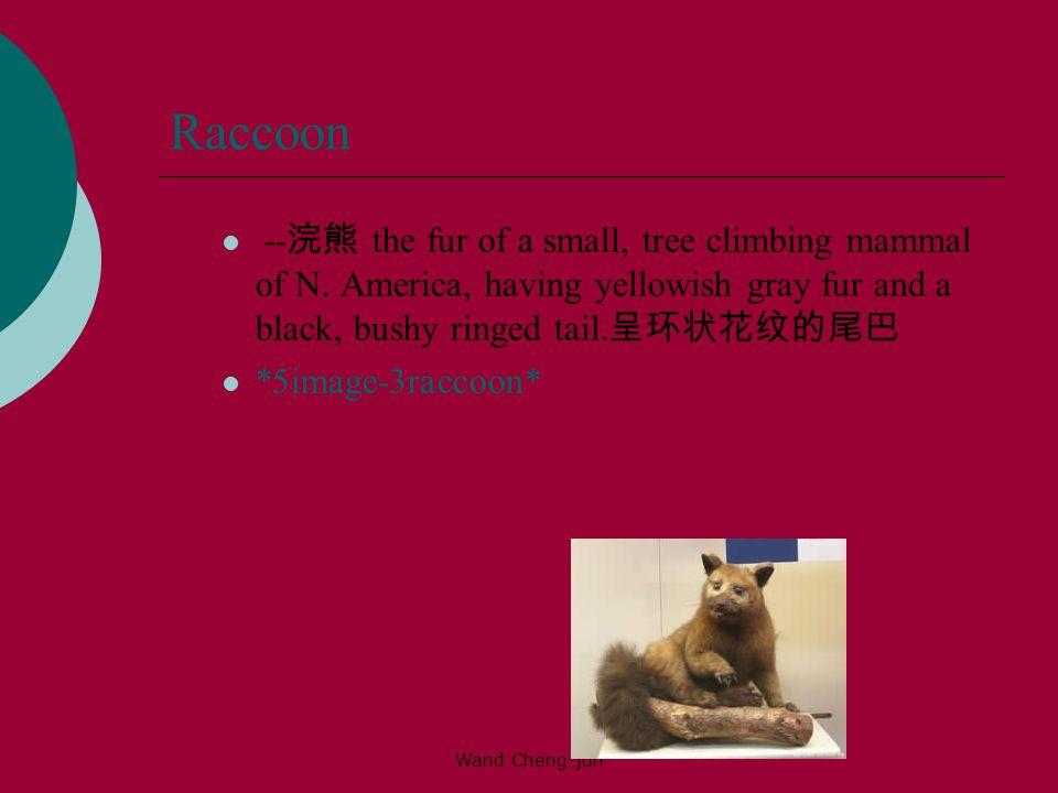Raccoon --浣熊 the fur of a small, tree climbing mammal of N. America, having yellowish gray fur and a black, bushy ringed tail.呈环状花纹的尾巴.