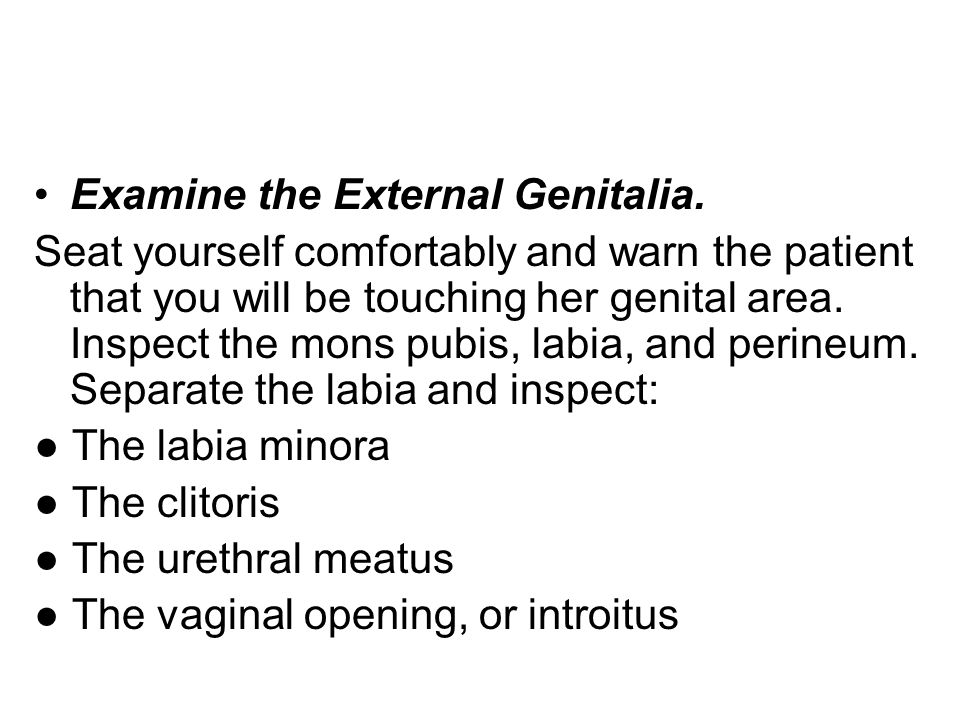 Examine the External Genitalia.