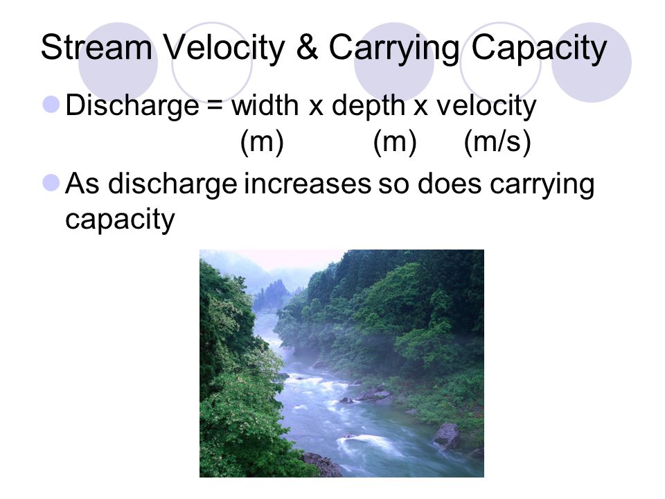 Stream Velocity & Carrying Capacity