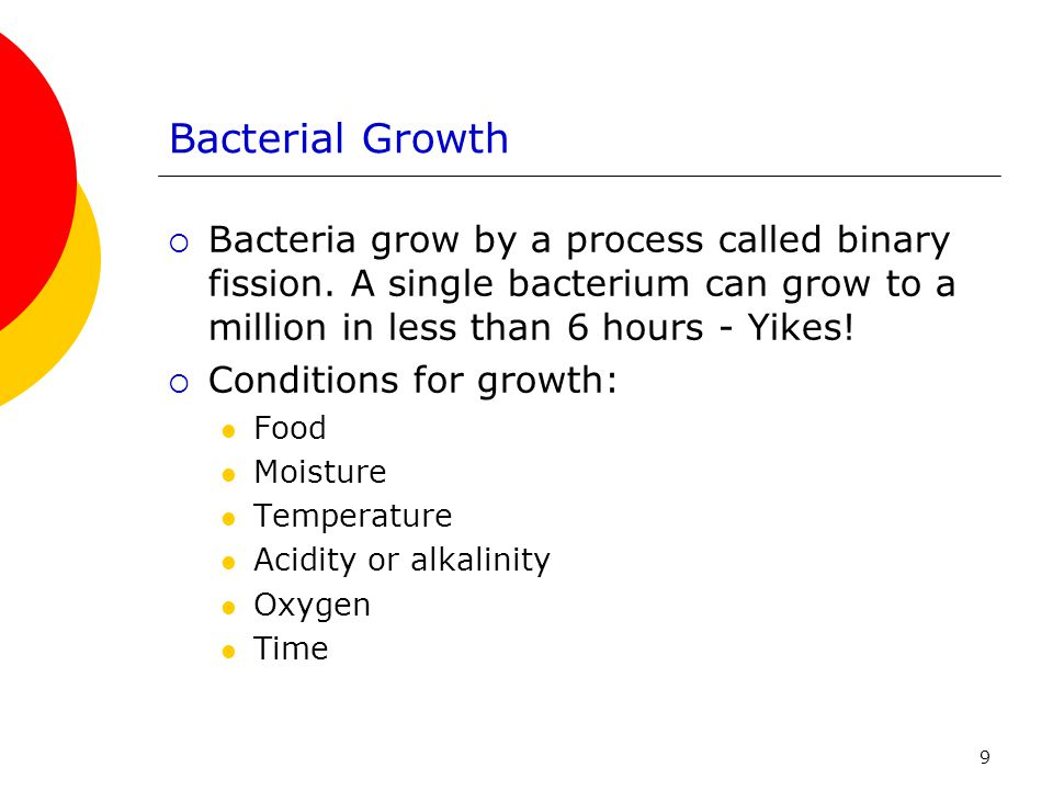 Bacterial Growth Bacteria grow by a process called binary fission. A single bacterium can grow to a million in less than 6 hours - Yikes!