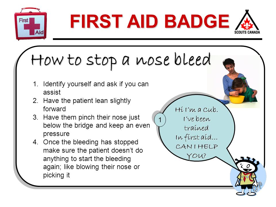 How to stop a nose bleed Hi I'm a Cub. I've been trained In first aid…