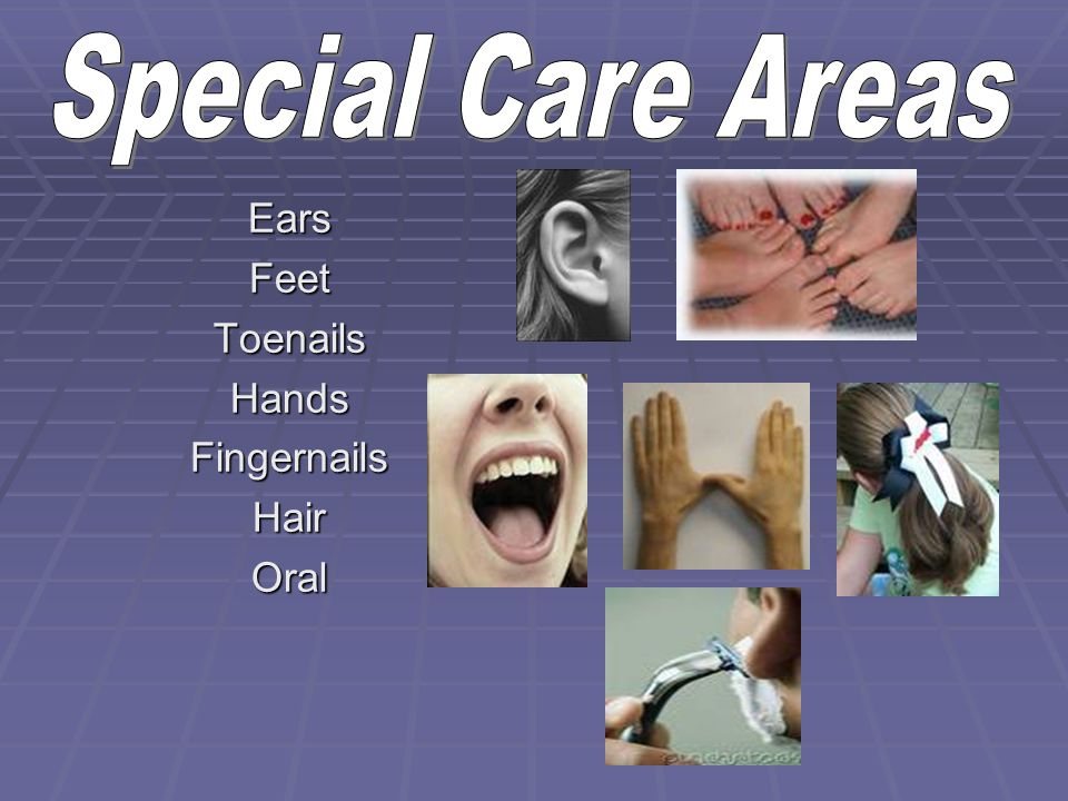 Special Care Areas Ears Feet Toenails Hands Fingernails Hair Oral
