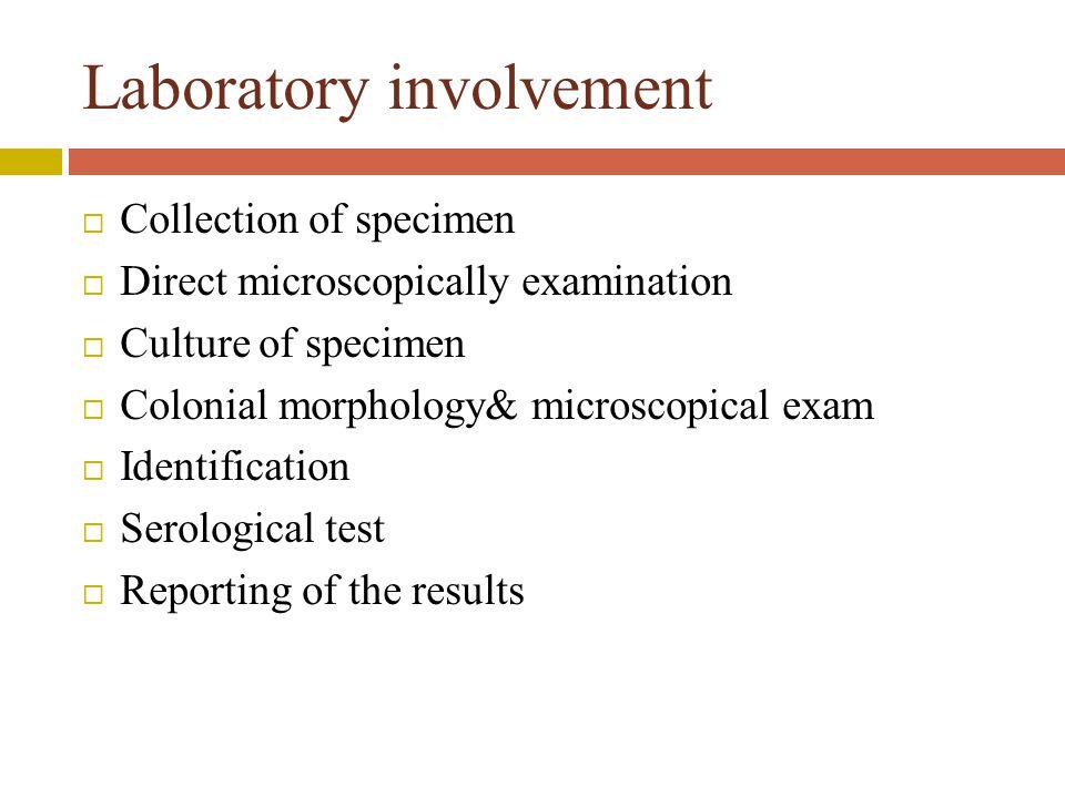 Laboratory involvement